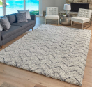 Best Area Rug in 2020 – Best Home Decor Guide